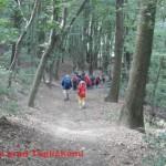4 - V lese pred Tepličkami